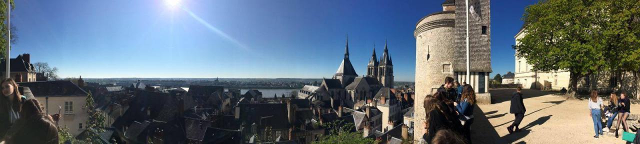 Vue sur Blois